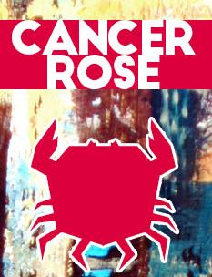 https://www.cancer-rose.fr/